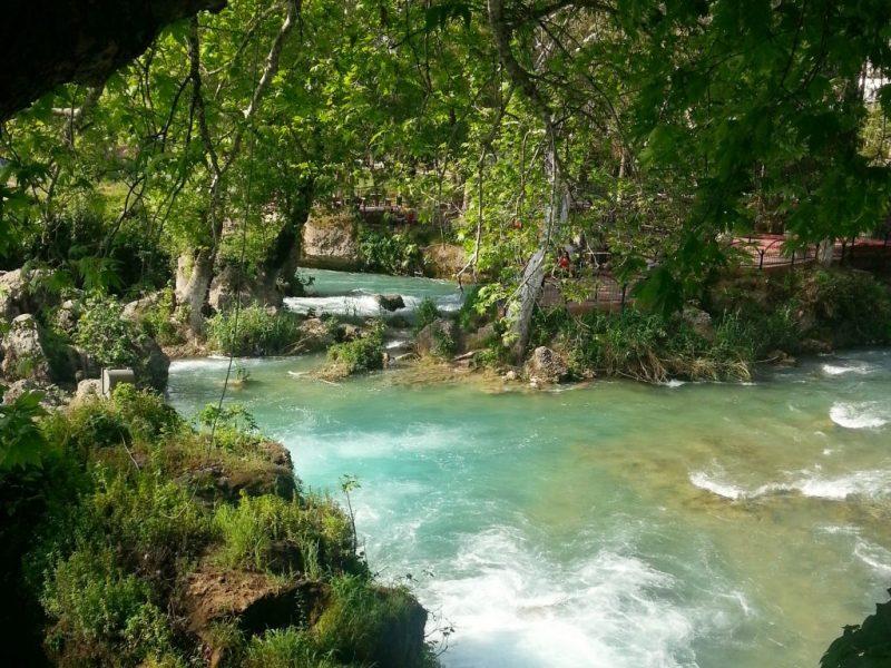 Tarsus-Selalesi