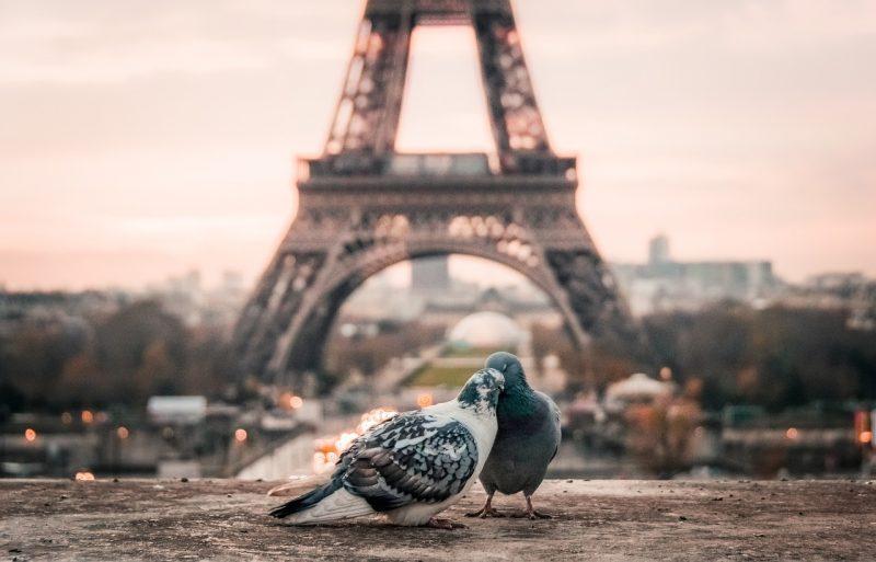 Gay Dostu Avrupa Şehirleri, Paris